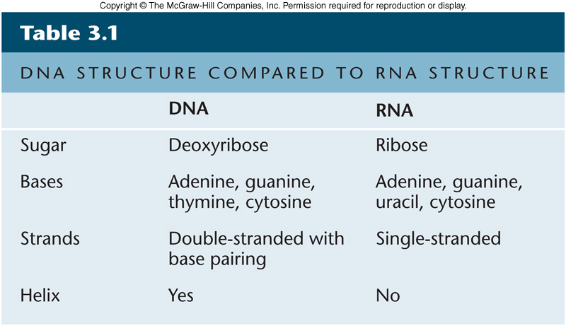 compare and contrast dna and rna Dna vs rna viruses viruses are communicable agents that cannot replicate without the presence of the host cell penetrating the host cell, reproducing and staying.