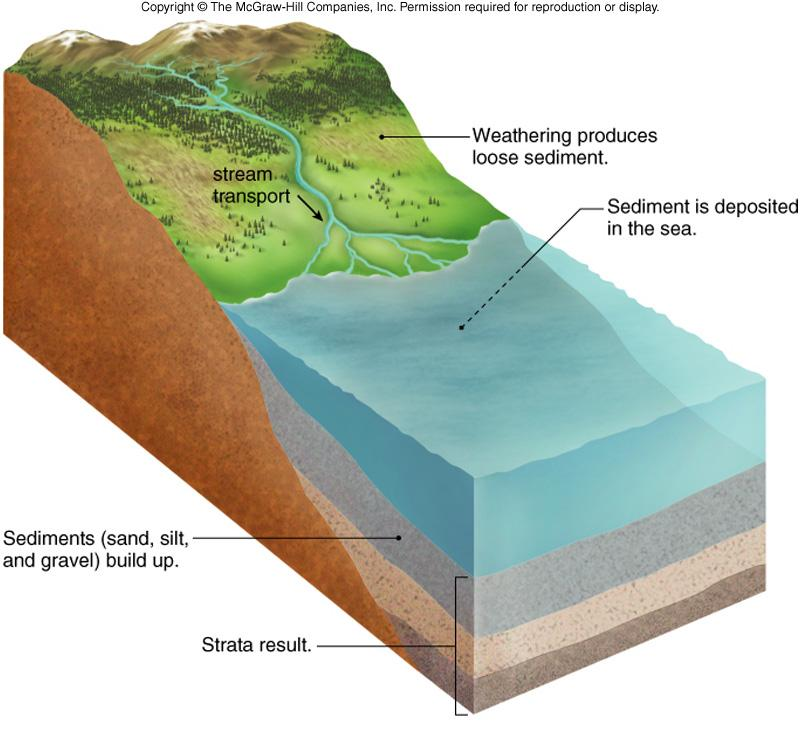 Formation Of Sedimentary Rocks - Lessons - Tes Teach